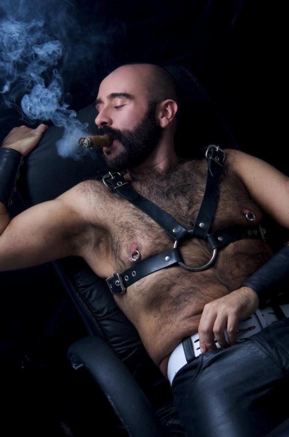 daddy bear gay video