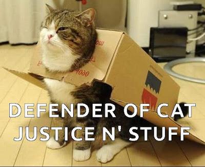 hero cat meme