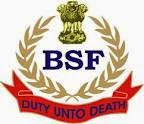 Border Security Force Logo
