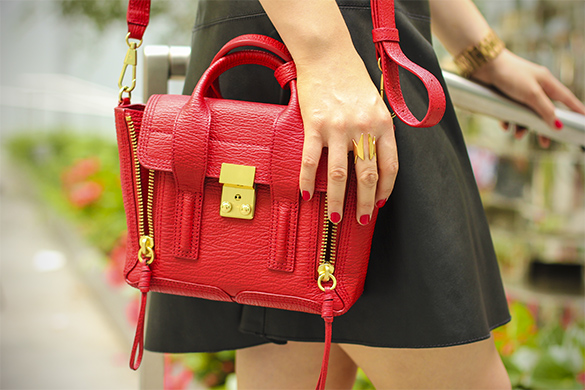 3.1 Phillip Lim Pashli Mini Satchel with CC Skype superwoman ring