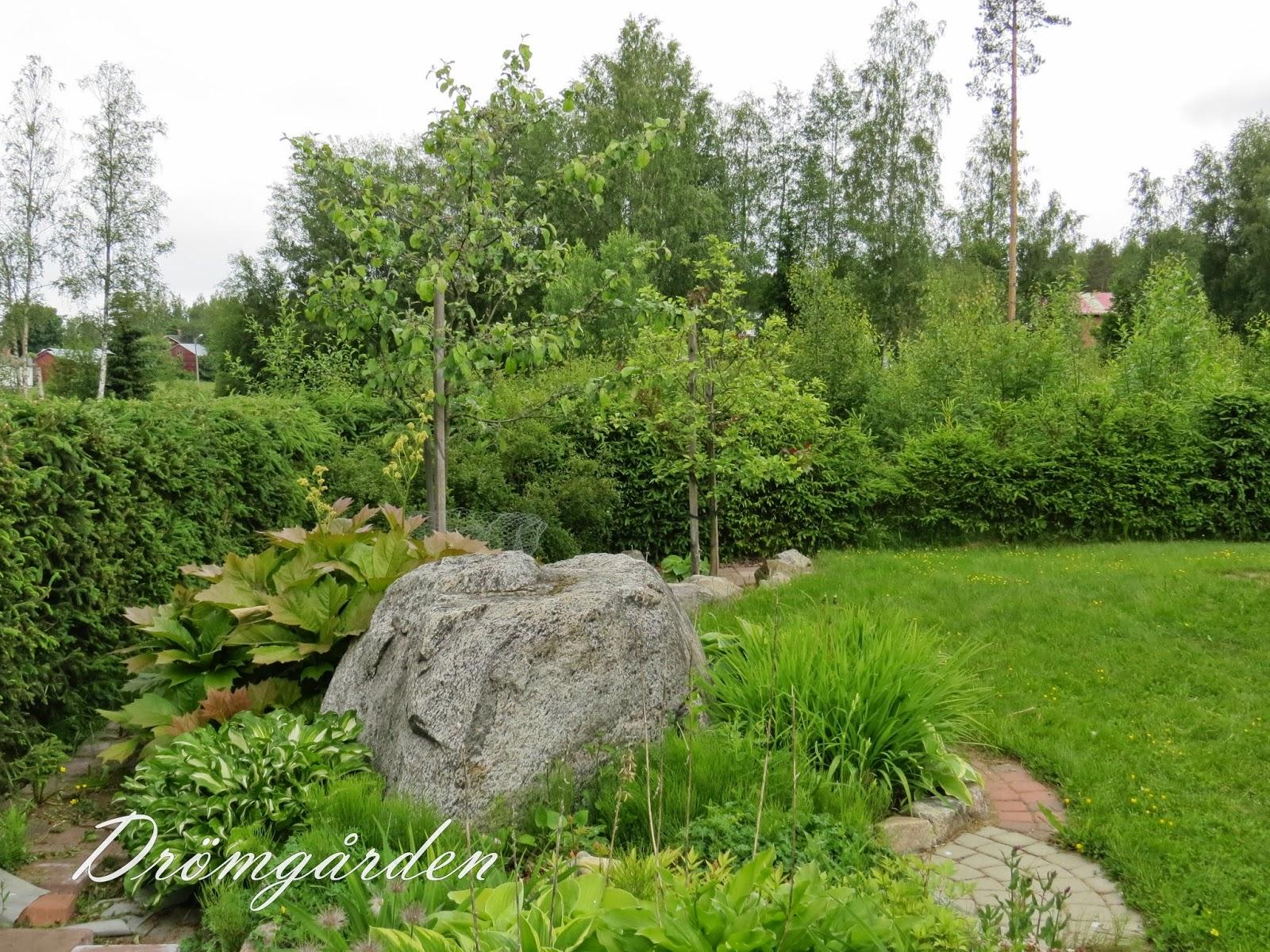Drömgården: augusti 2014
