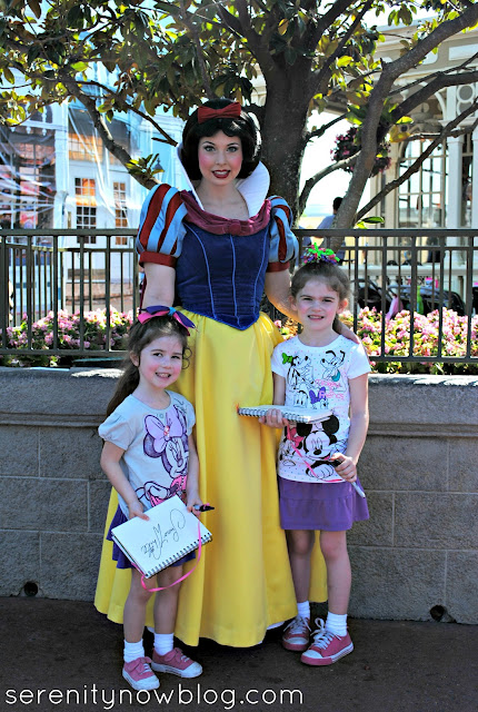 Meeting Snow White in the Magic Kingdom, Serenity Now blog