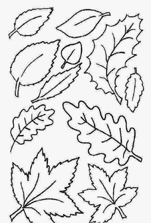 leaf coloring pages children-#23