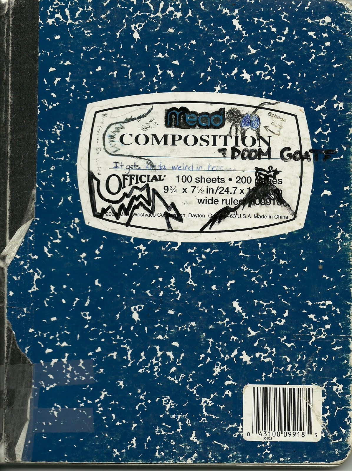 Composition Notebook - A Journey Through A High School Mind