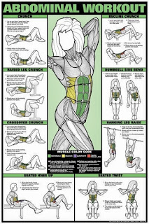 ab workouts sheet protocol