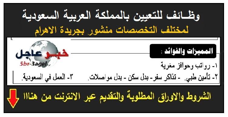 اعلان وظائف للعمل بالمملكة العربية السعودية بمزايا وحوافز مغرية - التقديم على الانترنت