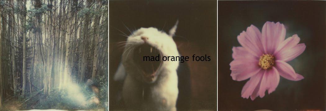 mad orange fools
