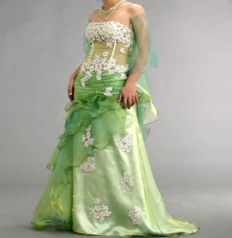 Wedding Dress Photography Green And White Wedding Dress