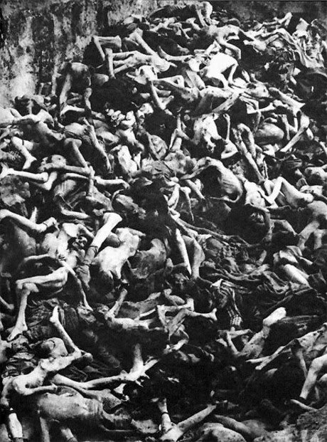 factors leading to the holocaust Return to the teacher's guide nazi fascism and the modern totalitarian state synopsis the government of nazi germany was a fascist, totalitarian state totalitarian regimes, in contrast to a dictatorship, establish complete political, social, and cultural control over their subjects, and are usually headed by a charismatic leader.