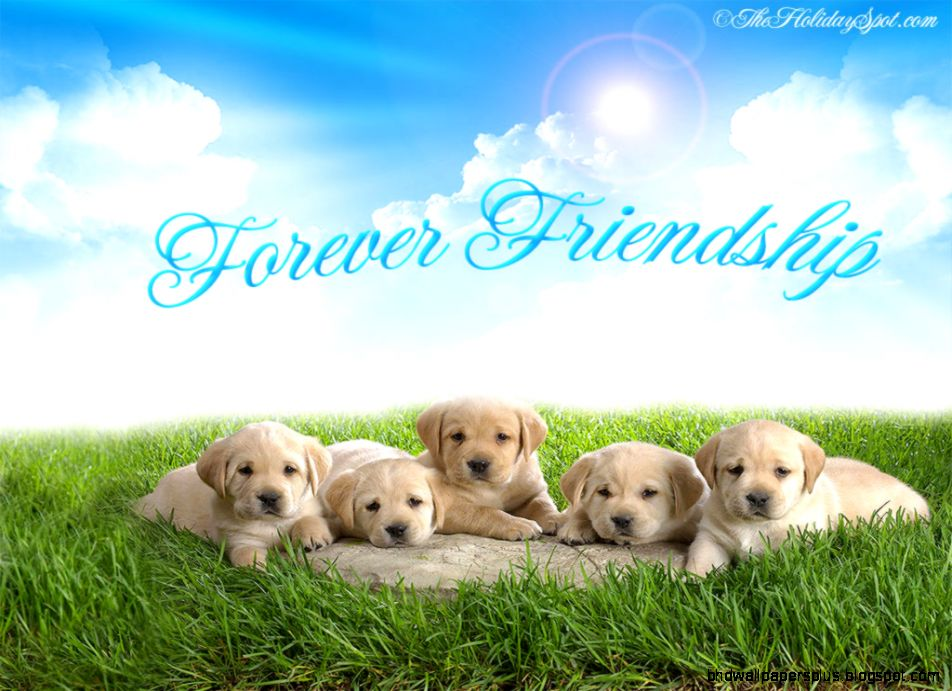 Friendship Day wallpapers free