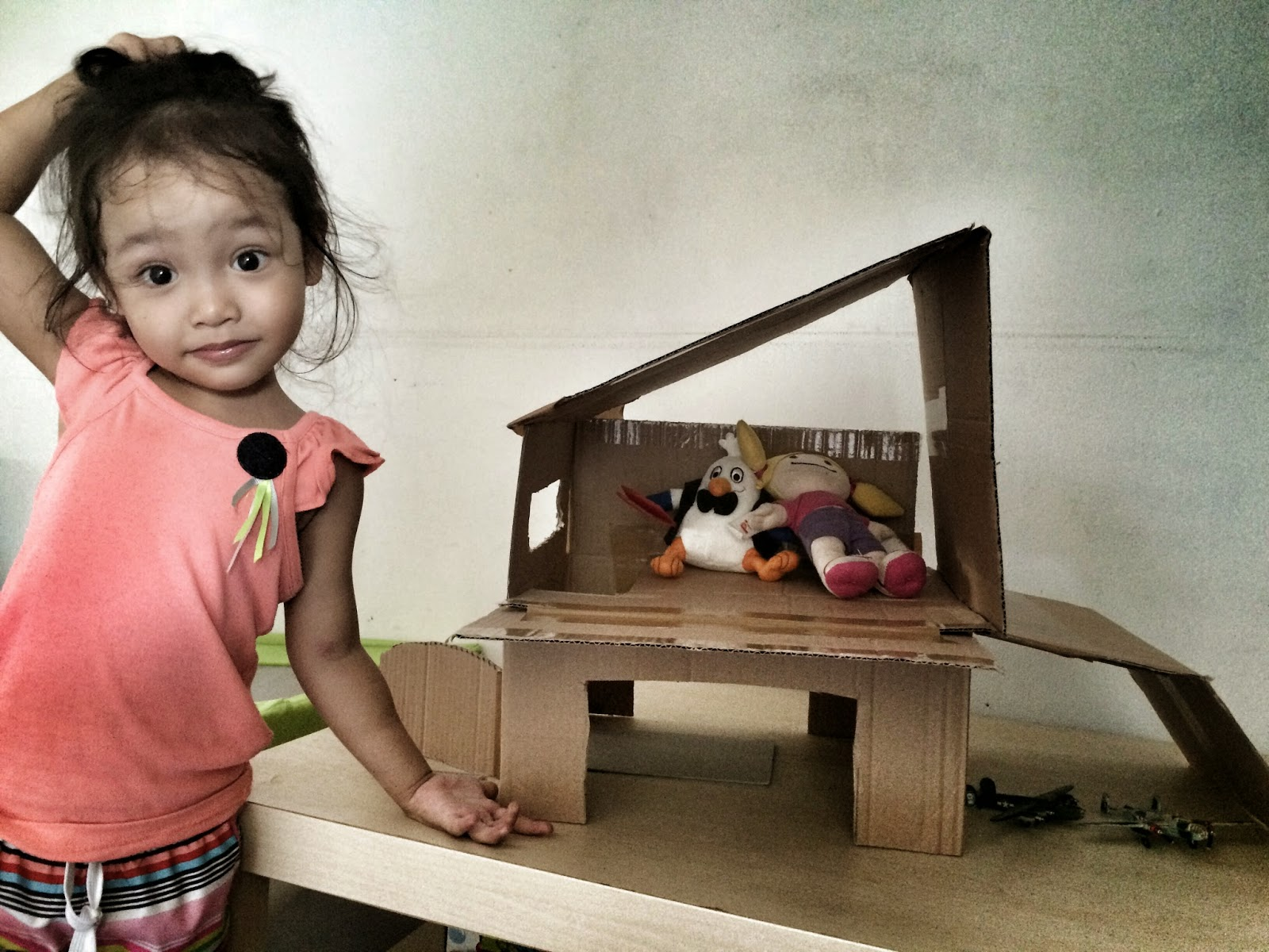 The Accidental Doll House Project