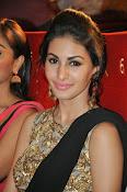 Amrya dastur glamorous photos-thumbnail-25