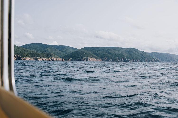 Captain Marks Whalewatching Cruise Cape Breton