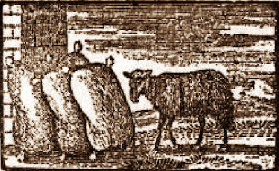 Baa Baa Black Sheep Illustration Picture from 1765