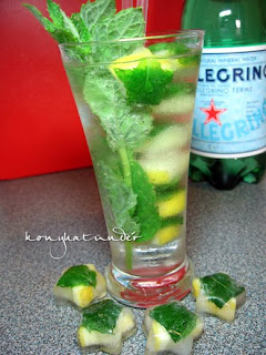 lemon-mint-ice-cubes