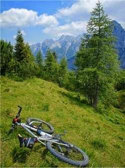 Bicicleta é o meio de transporte que torna as pessoas mais felizes