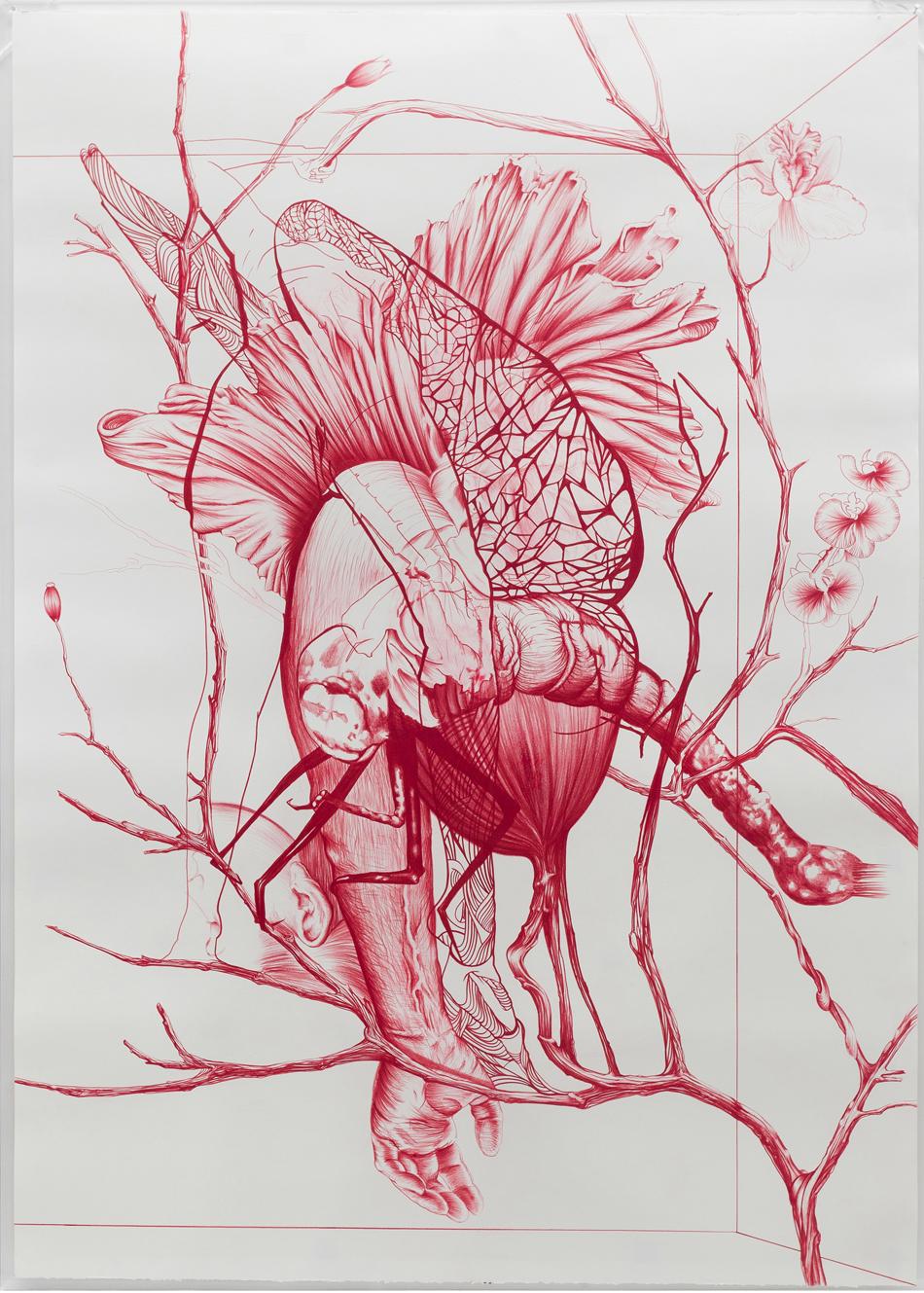 Rodolpho-Parigi-quadro-libellula