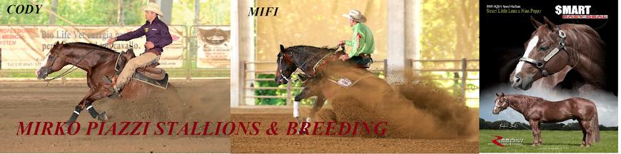Mirko Piazzi Stallions