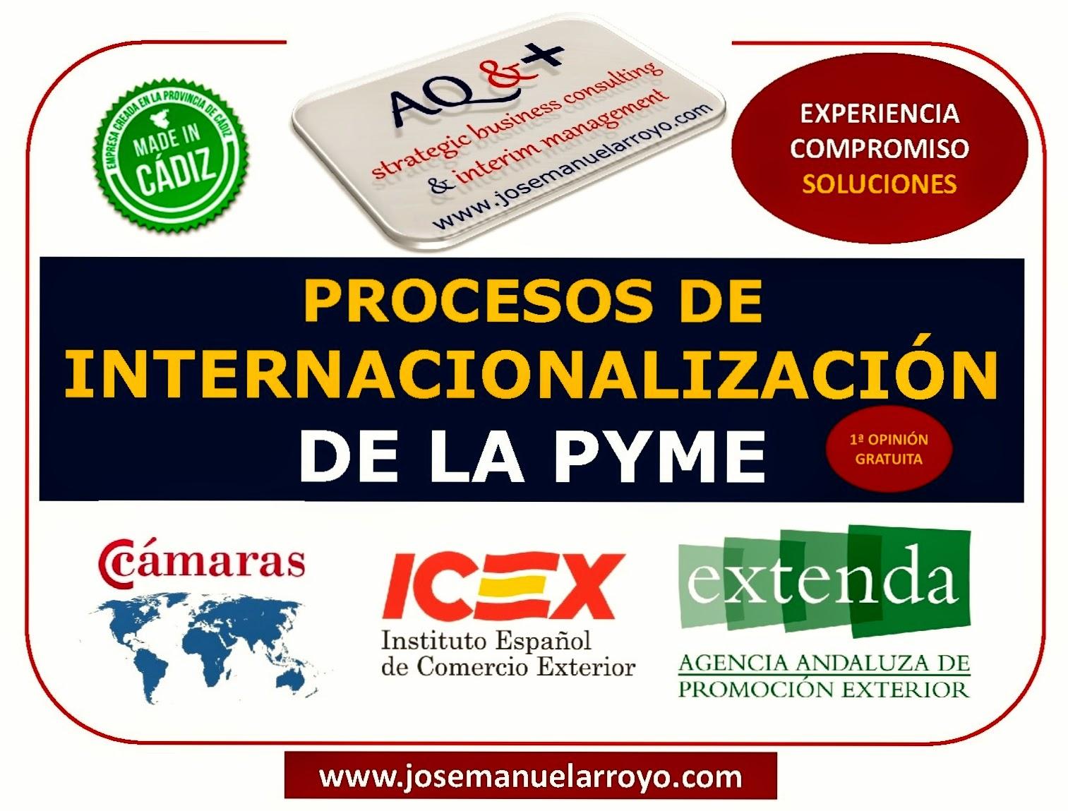 PROCESOS DE INTERNACIONALIZACIÓN DE LA PYME