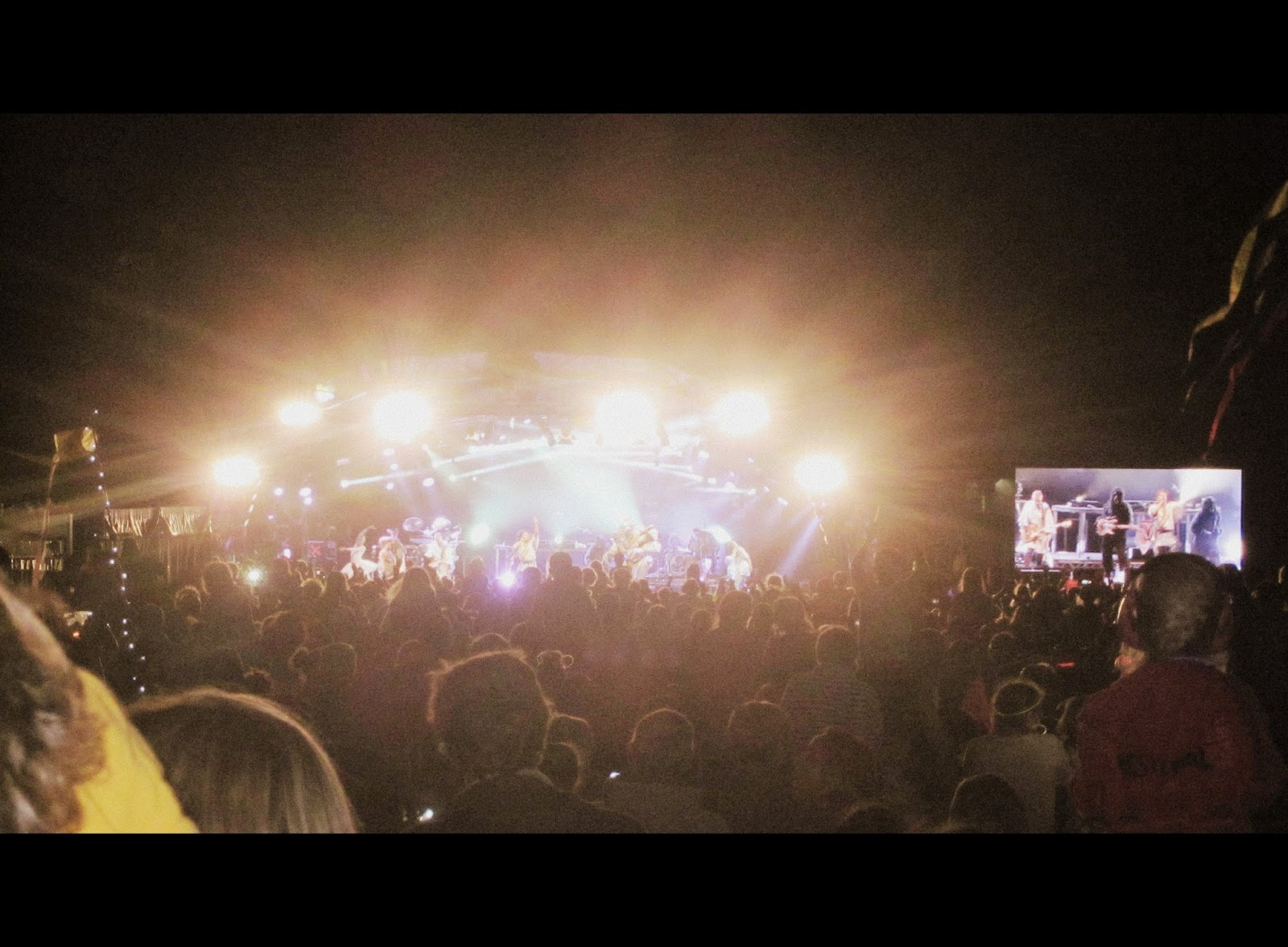 Camp Bestival 2014 Basement Jaxx  {Sunday} // 76sunflowers