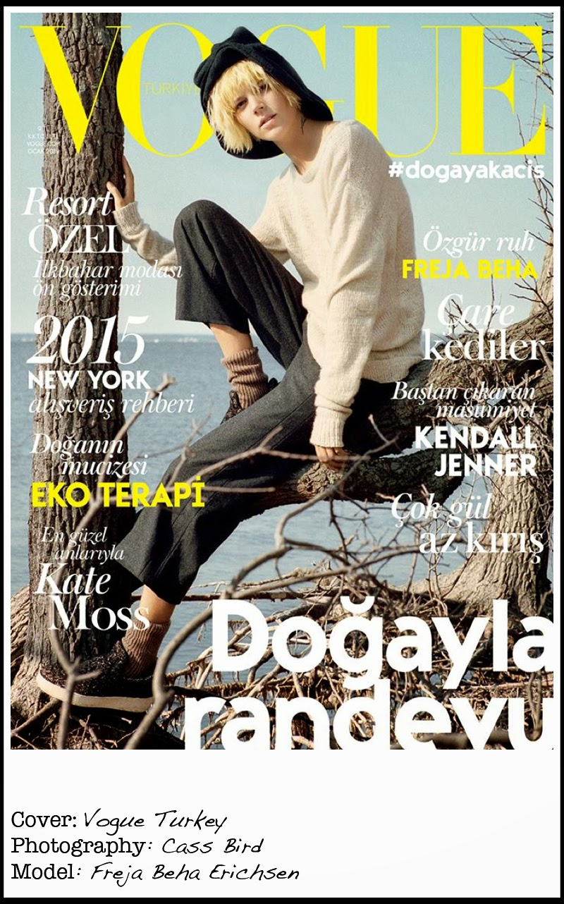 Top Cover January 2015