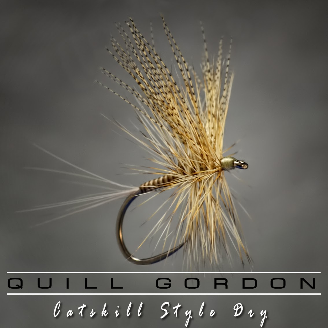 The quill gordon fly fish food fly tying and fly fishing for Fly fishing fly
