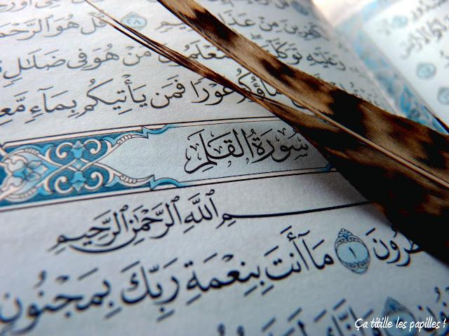 Coran, Dieu, Allah, Plume, Al Qalam, Ça titille les papilles !