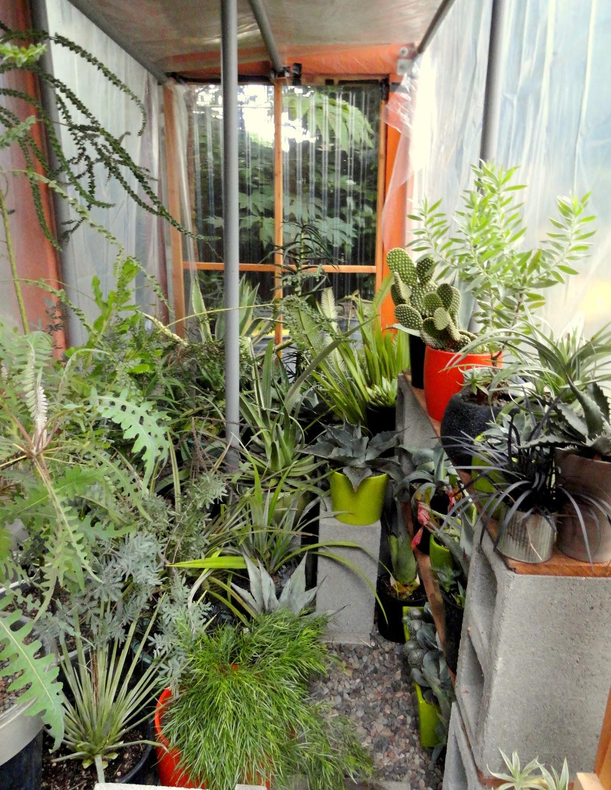 danger garden winterizing