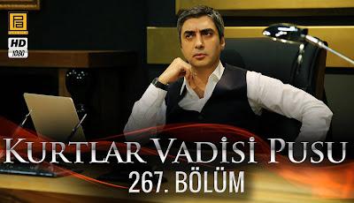 http://kurtlarvadisi2o23.blogspot.com/p/kurtlar-vadisi-pusu-267-bolum.html