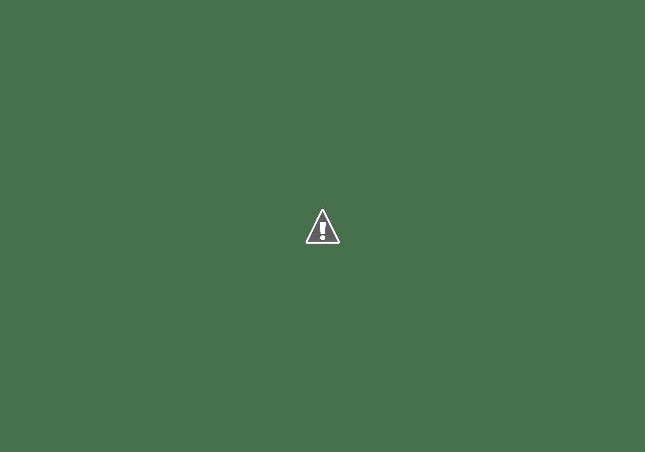 torta fabiana: torta & wafers per il compleanno di fabiana