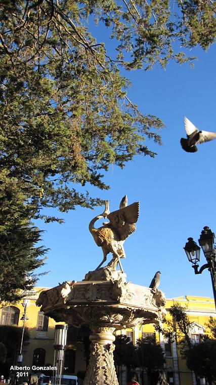 Aves metálicas , aves verdaderas