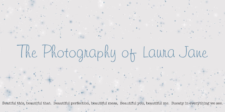 the photography of laura jane