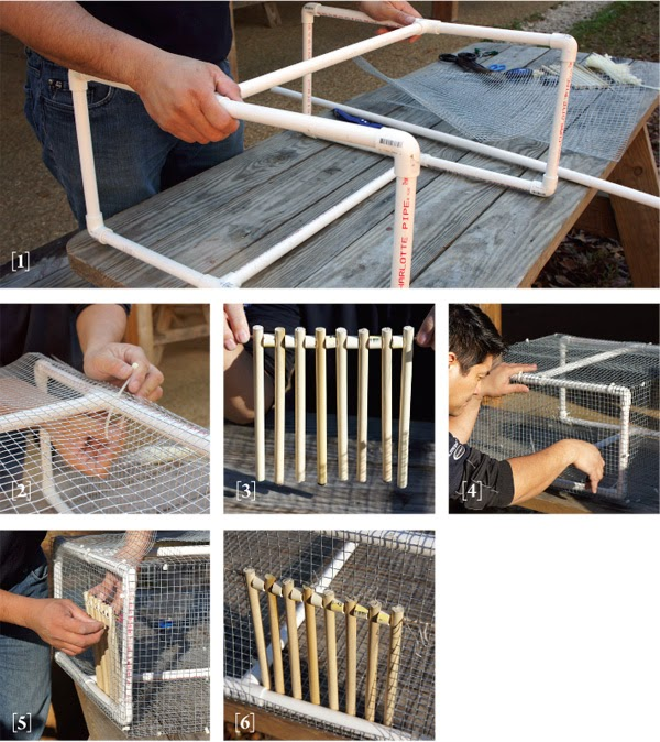 Install one-way door on entrance using wire or zip ties. & Build your own pigeon trap | Pigeons Palace Pezcame.Com