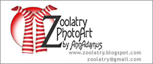 Thank you, Zoolatry!