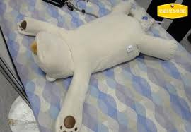 بالصور :ابتكار وسادة تمنع الشخير اثناء النوم