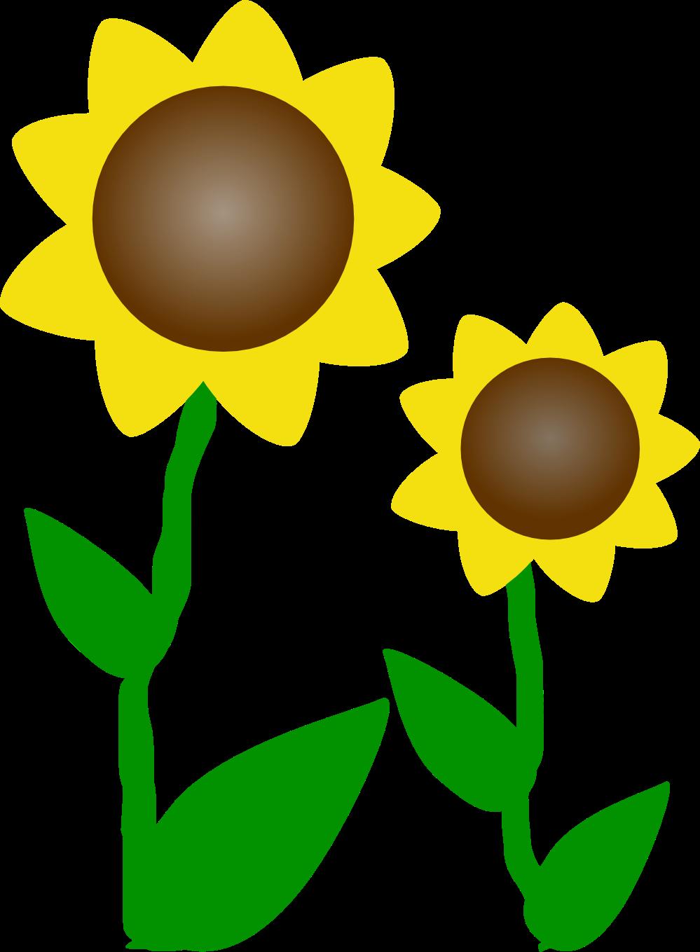 Sunflower Clip Art Black And White Sunflower clip art black