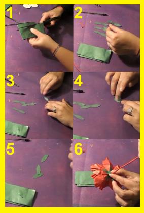 Hojas de papel de seda hibisco