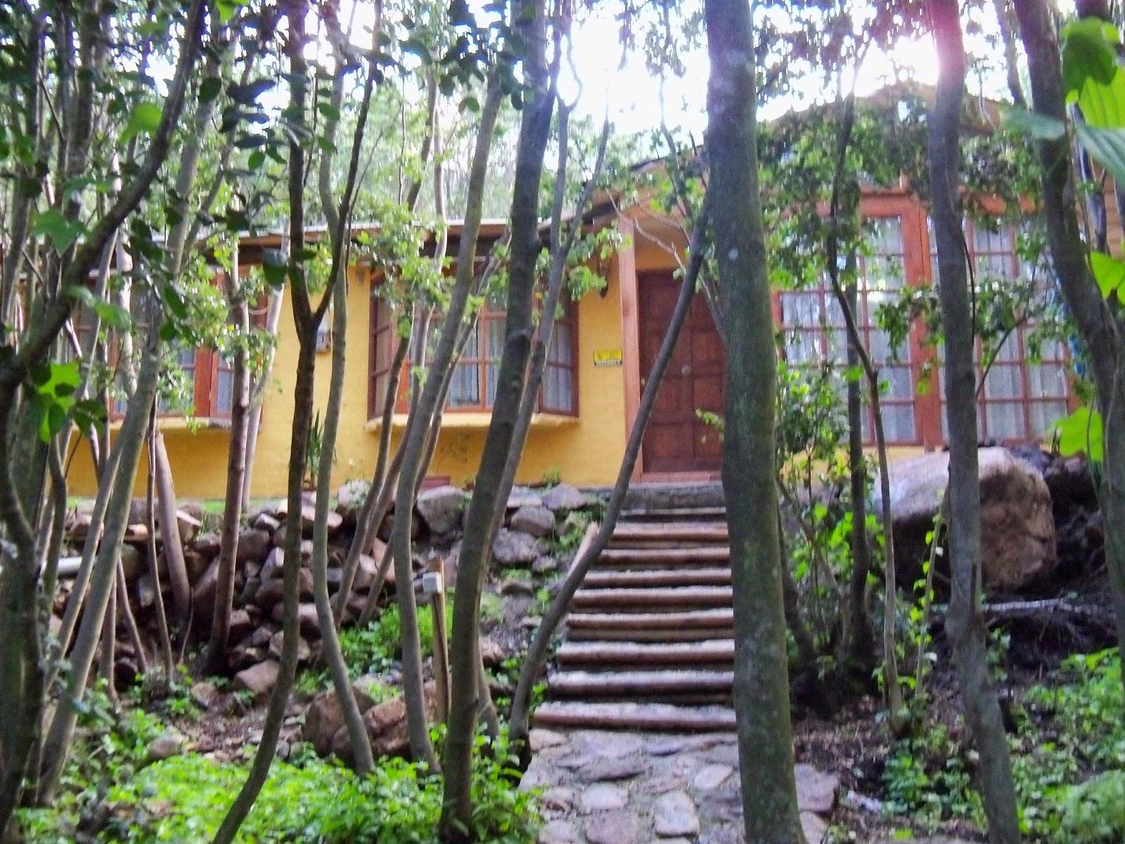 Propiedades de paine parcela con casa en bosque nativo de - Parcela con casa ...
