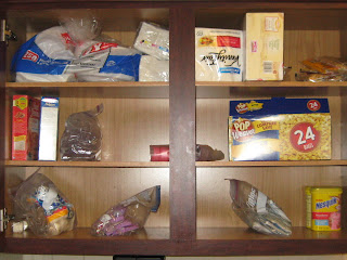 30 Day Paleo Challenge - Kid Pantry After