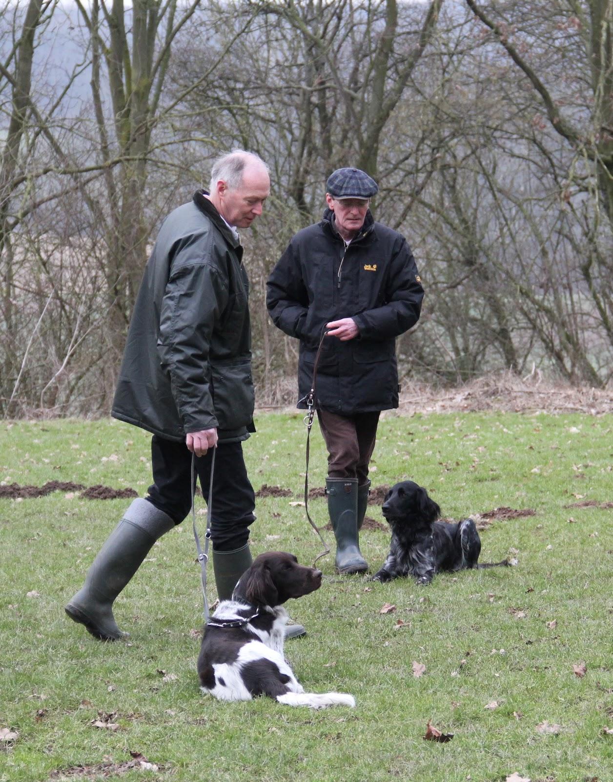 honden commandos lijst