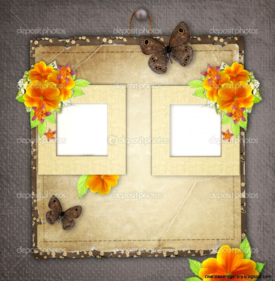 Vintage background with frame for photo butterfly and yellow fl