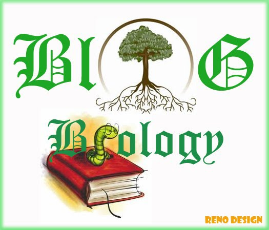Blog Biology