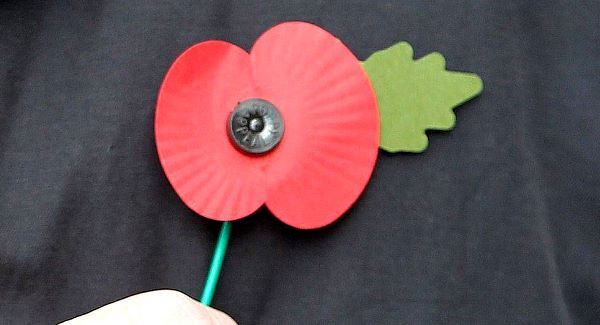 Lockys english playground culture world whats that flower badge the remembrance poppy lapel version image breakingnews mightylinksfo