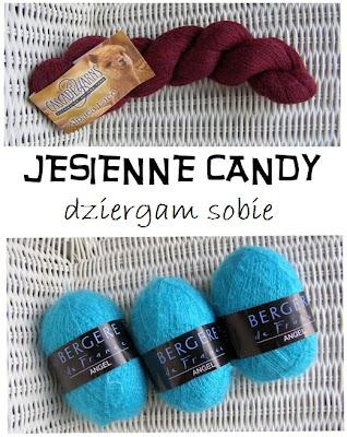 Candy u Dziergam Sobie