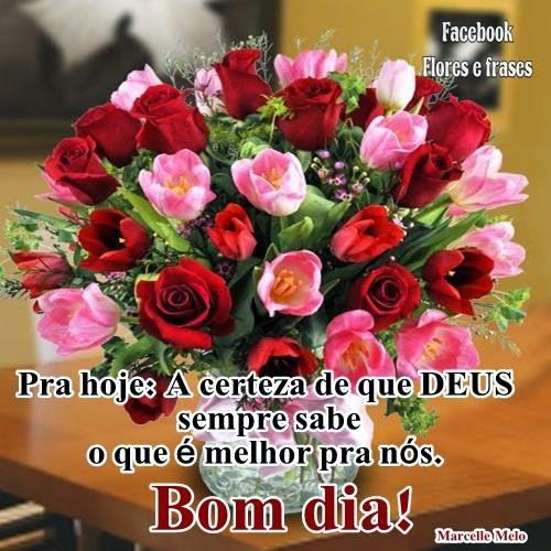 Tag Frases De Bom Dia Com Deus E Flores