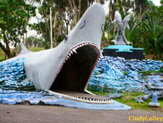 batu hiu pangandaran! lepas penat anda bersama deburan ombak