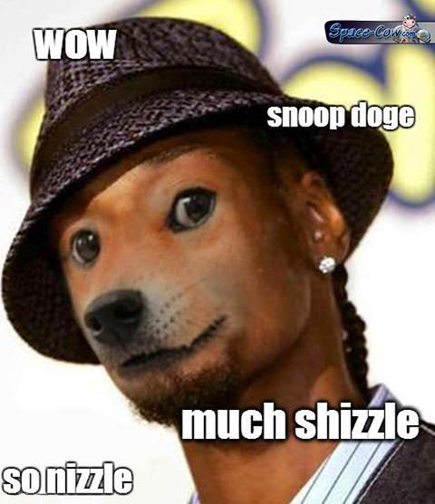 funny celebrities Doge picture
