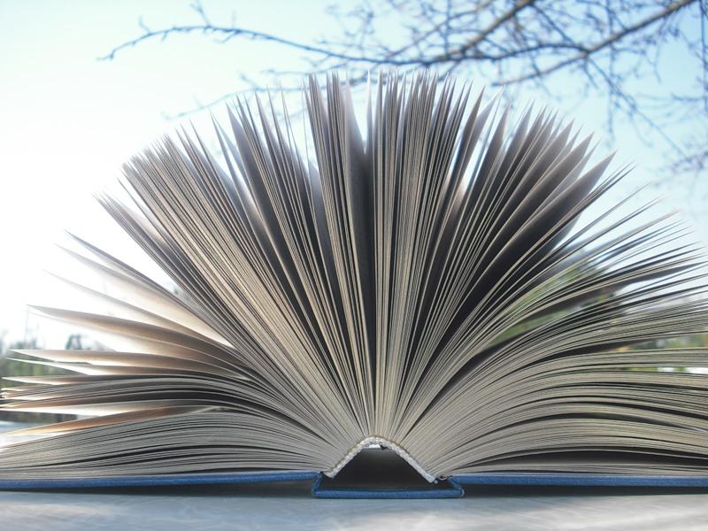 Твое знание Курсовая работа как писать введение Курсовая работа как писать введение