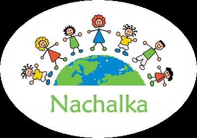 Сетевые проекты для начальной школы