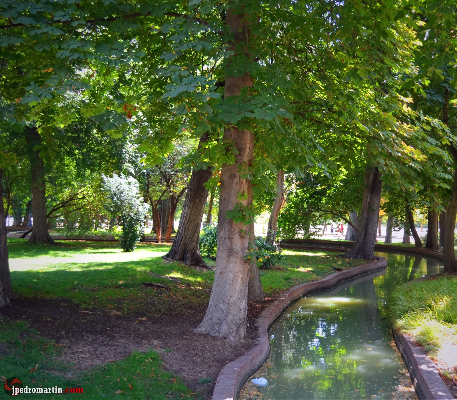 Madrid xi jardines del retiro 1 j pedro mart n - Arboles artificiales madrid ...